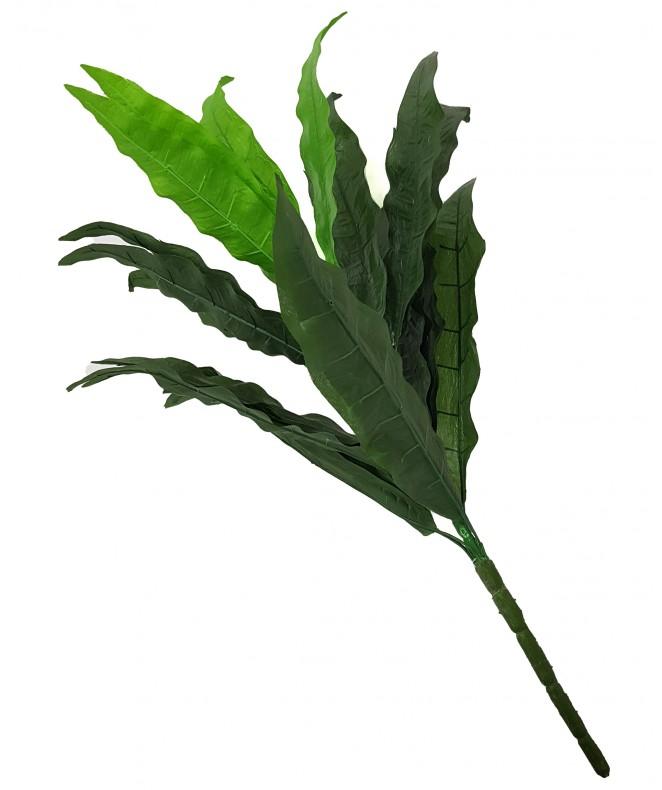 Ramo de 24 hojas - 70cm aprox. - RAMOS