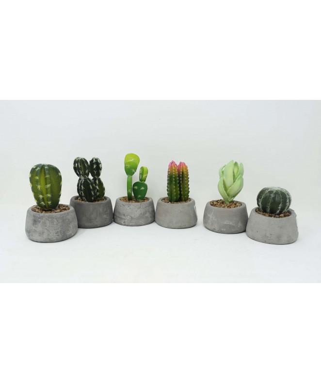 Cactus en maceta simil piedra - 15cm aprox - MACETAS CON FLORES